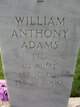 Profile photo:  William Anthony Adams