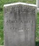 Profile photo:  Abner A Hull