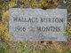 Wallace Burton