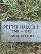 Profile photo:  Petter Haller, II