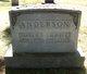 Anna Kirstine <I>Nelson</I> Anderson
