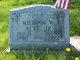Profile photo:  William W Alve, Jr