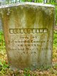 George Dana Cushing