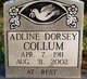 Profile photo:  Adline Dorsey Collum