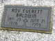 Roy Everett Baldwin