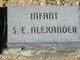 S E Alexander