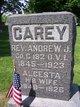 Profile photo:  Alcesta A. <I>Staley</I> Carey