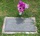 Alma Lee <I>Fitzgerald</I> Gardner