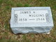 James A. Wiggins