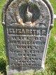 Elizabeth Pendleton <I>Orr</I> Alexander