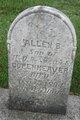 Profile photo:  Allen B. Copenheaver