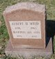 Profile photo:  Albert Hunt Wild