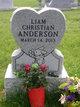 Profile photo:  Liam Christian Anderson