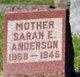 Profile photo:  Sarah E <I>Jenkins</I> Anderson