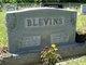 Minnie E <I>Mueller</I> Blevins