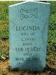 Lucinda Jane <I>Wells</I> Davis