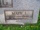 Mary J <I>White</I> Long