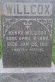 Henry Willcox