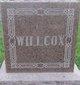 William Washington Willcox