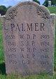 Profile photo:  A E Palmer