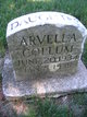 Arvella Collum