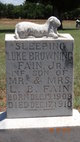 Luke Browning Fain, Jr