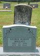 George Robert Wallace