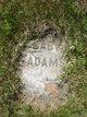Baby Adams