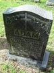 Profile photo:  Alexander Adam