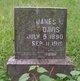 James Wilson Davis