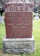 Robert James Giles