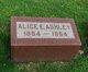 Profile photo:  Alice E. Ashley