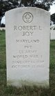 Robert L Joy