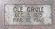 Ole Gavle