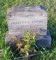 Charles Lester Adams