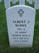 Profile photo:  Albert J Burke