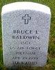 Profile photo:  Bruce L Baldwin