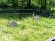 Small Pox Burying Ground