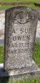 Profile photo:  A. Sue Owen