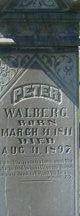Peter Walberg
