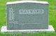 Satira Lewis <I>Martin</I> Hayward