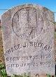 Wade J Sheram