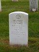 Sgt Robert Goines