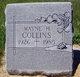 Wayne Harvey Collins