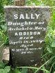 Profile photo:  Sally Addison
