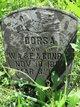 Dorsa Conrad