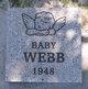 Profile photo:  Baby Webb