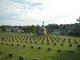 Profile photo:  Confederate Memorial