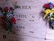 Edna Earl <I>Maranville</I> Rhea