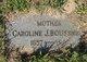 Caroline Janette <I>Meyer</I> Boussneur
